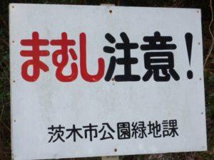 Znak: Uwaga Mamushi!