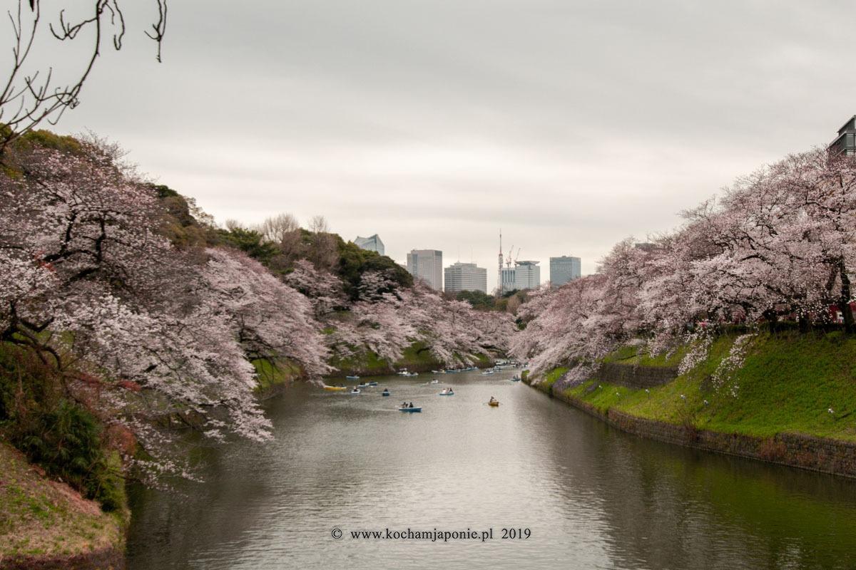 Fosa pałacu cesarskiego Tokyo
