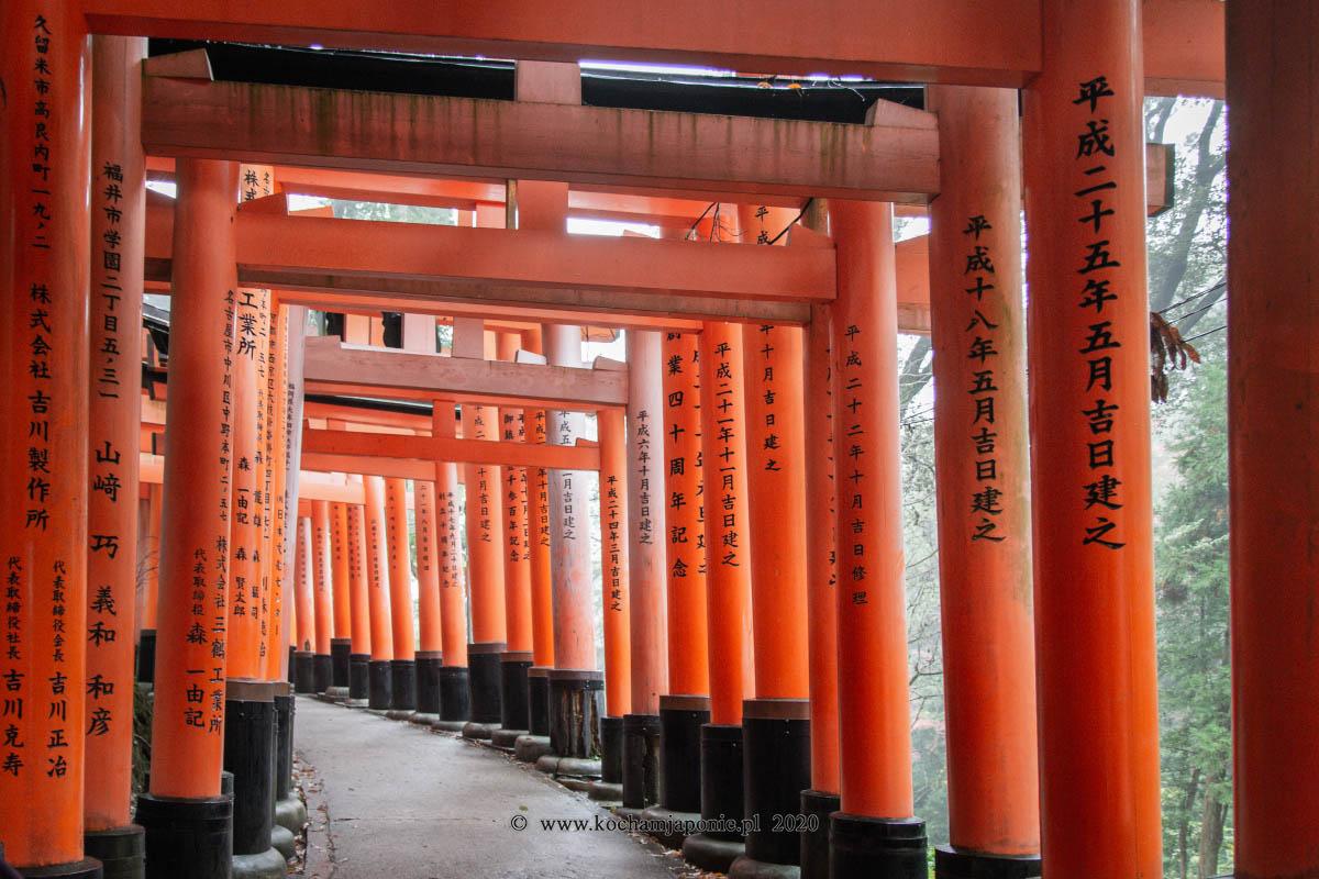 Tunele z bram torii